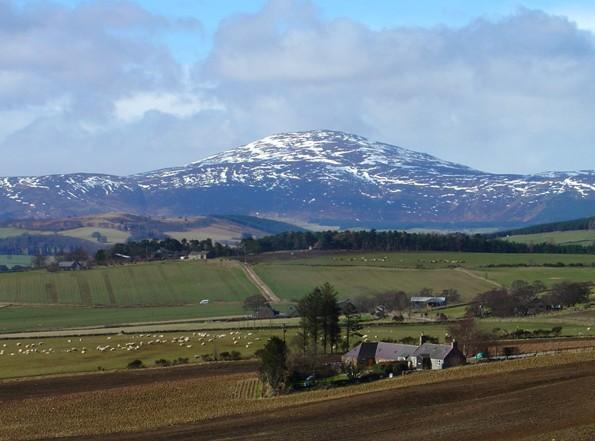 Morven, Caithness - Wikipedia